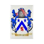 Artige Rectangle Magnet (100 pack)