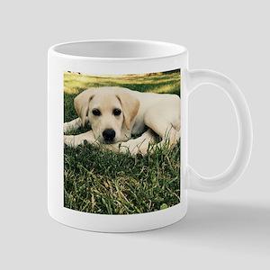Cute Puppy Lab Mugs