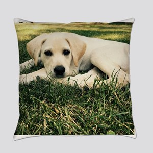 Cute Puppy Lab Everyday Pillow
