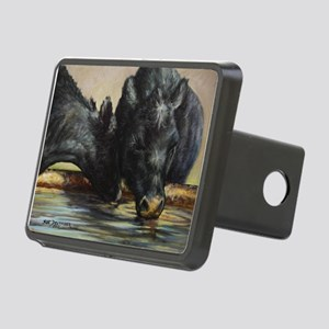 Two Black Angus Rectangular Hitch Cover