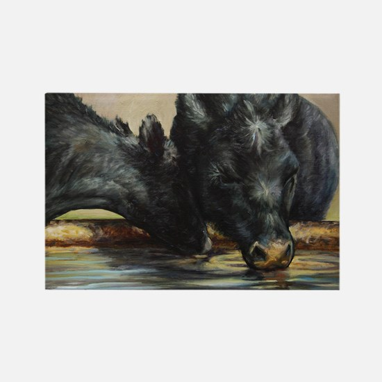 Two Black Angus Rectangle Magnet