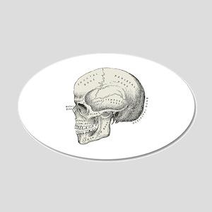 Skull 20x12 Oval Wall Decal