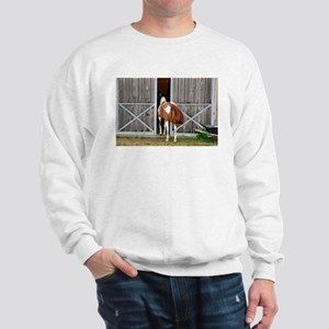 My Paint Horse is Curious Sweatshirt