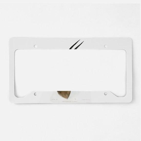 Antelope Illustration License Plate Holder