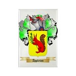 Appleton Rectangle Magnet (10 pack)