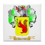 Appleton Tile Coaster