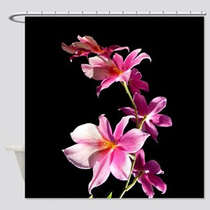 Pink Flowers. Orchid. Shower Curtain