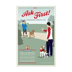 Ask First! Posters