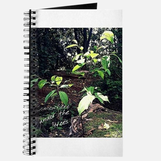 Somewhere under thr trees Journal