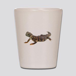 Uromastix Shot Glass