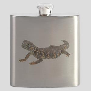 Uromastix Flask