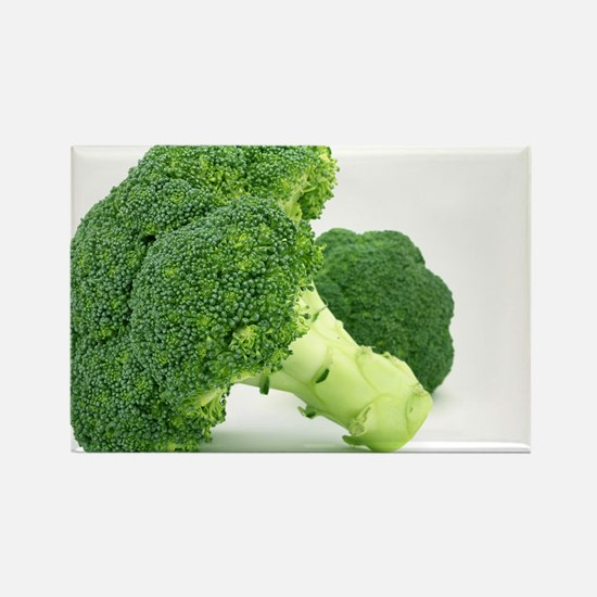 F & V - Broccoli Design Rectangle Magnet