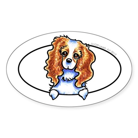 CKCS Blenheim Peeking Bumper Sticker