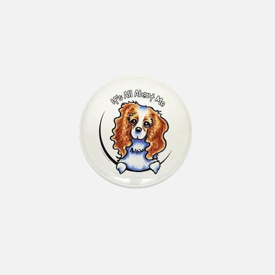 CKCS Blenheim IAAM Mini Button
