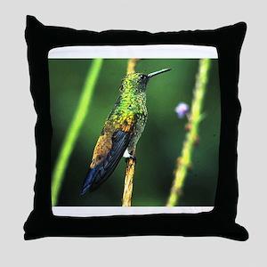 White-chested Emerald Hummingbird Throw Pillow