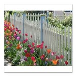 Tulips Along White Picket Fence Square Car Magnet