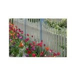 Tulips Along White Picket Fence Rectangle Magnet