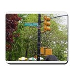 Central Park street sign Mousepad