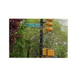 Central Park street sign Rectangle Magnet (100 pac