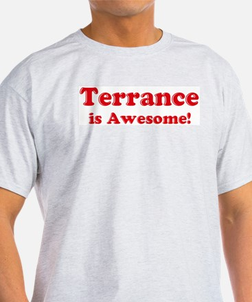 Terrance is Awesome Ash Grey T-Shirt