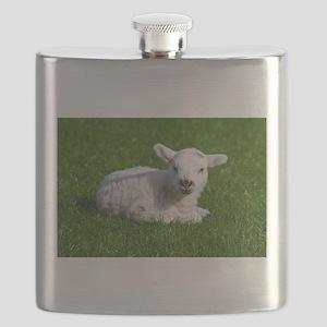 Baby lamb Flask