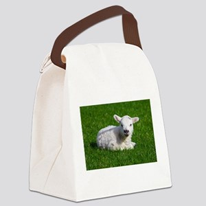 Baby lamb Canvas Lunch Bag