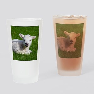 Baby lamb Drinking Glass