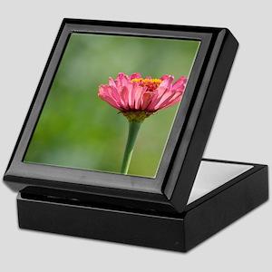 Pink Zinnia Flower Keepsake Box