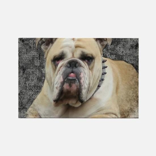 Cute Olde english bulldog Rectangle Magnet
