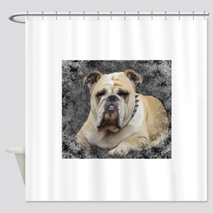 Dogs, english bulldogge, grim looki Shower Curtain