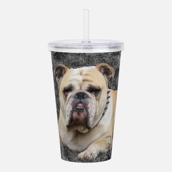 Dogs, english bulldogg Acrylic Double-wall Tumbler
