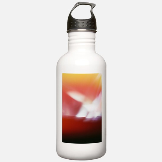 The Hand of God Water Bottle