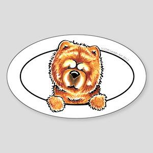 Chow Chow Peeking Bumper Sticker