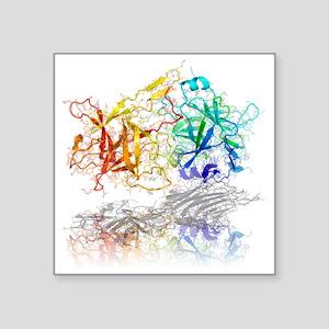 Tetanus toxin C-fragment structure - Square Sticke