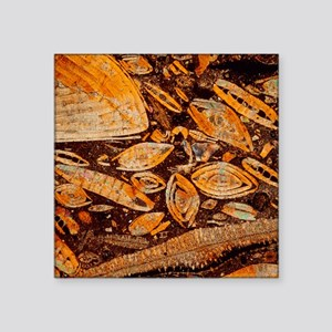 Limestone - Square Sticker 3