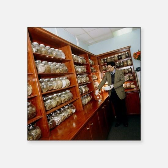 Herbalist in a Chinese herbal medicine pharmacy -