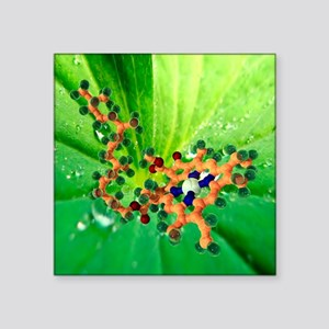 Chlorophyll molecule - Square Sticker 3