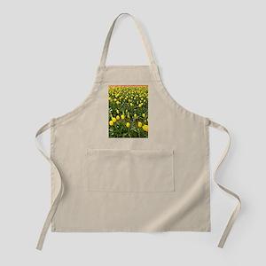Yellow Field of Tulips Apron