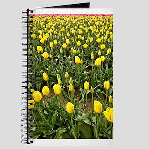 Yellow Field of Tulips Journal