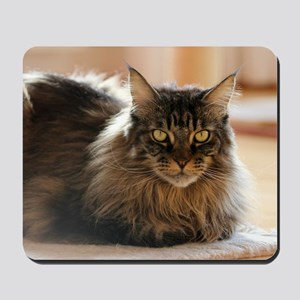 Maine Coon Mousepad