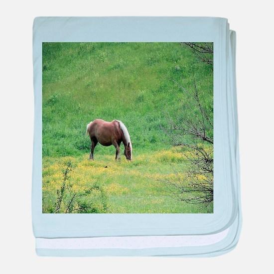 Amish Draft Horse baby blanket