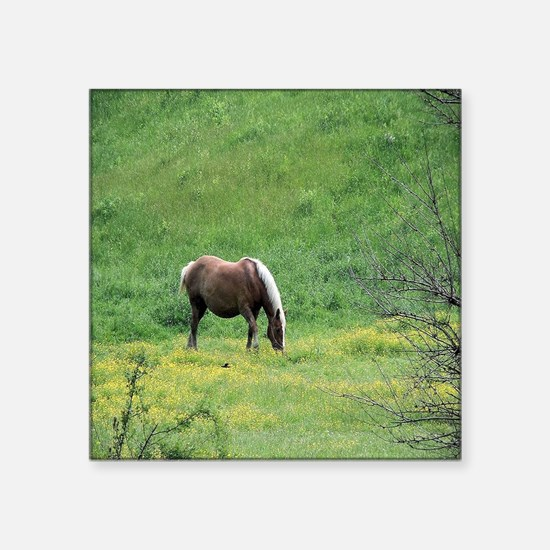 Amish Draft Horse Sticker
