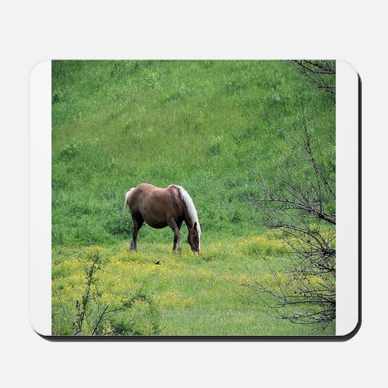 Amish Draft Horse Mousepad