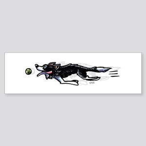 Border Collie Action Bumper Sticker