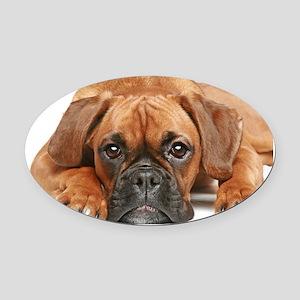 German Boxer dog - Oval Car Magnet