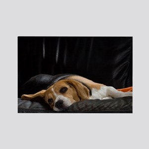 Lazy Beagle - Rectangle Magnet