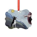Boston Terrier 3 - Creation of Man Picture Ornamen