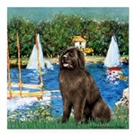 MP-SAILBOATS1-Newfie-Brown2 Square Car Magnet