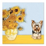 MP-Sunflowers - Yorkshire Terrier 17 Square Ca