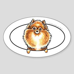 Orange Pomeranian Peeking Bumper Sticker